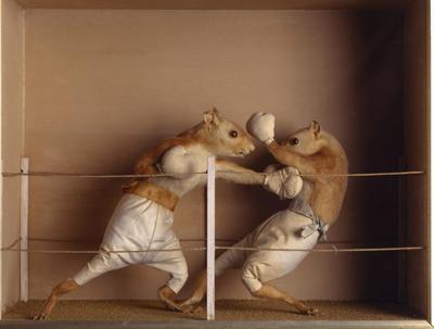 [Image: prize-fight1.jpg]